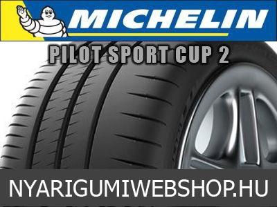 michelin pilot sport cup rg p. Black Bedroom Furniture Sets. Home Design Ideas