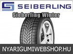 Seiberling - SEIBERLING WINTER téligumik